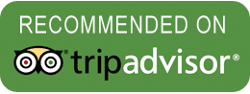 Kayak With Whales is Recommended on TripAdvisor
